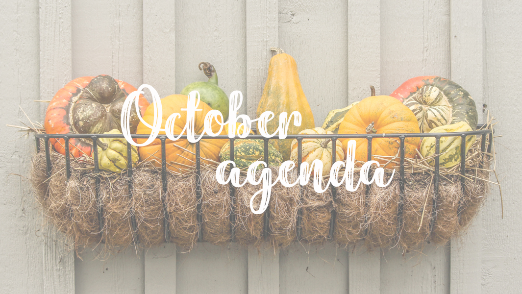 What you cannot miss in October!